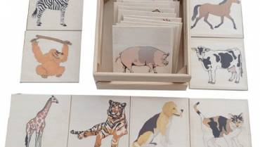 Domaće i divlje životinje sa magnetom 2D 4+